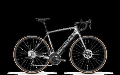 Campana Radsport - Focus Paralane² 9.8 2020
