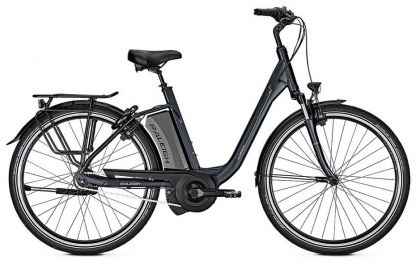 Campana Radsport - Raleigh Boston XXL