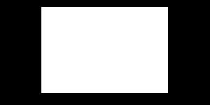 Niner Logo